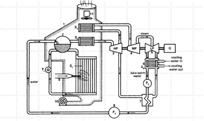 Principal Components of a Thermal Power Plant